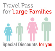 Large families travel card